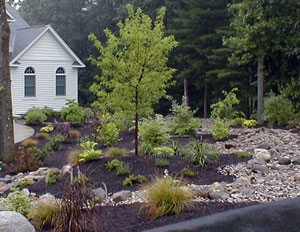 Cottage and low maintenance landscaping grand rapids mi for Low to no maintenance landscaping