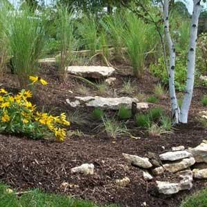 Grand Rapids Rain Gardens