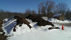 Spring clean up Grand Rapids and bark mulch